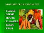 what parts of plants do we eat