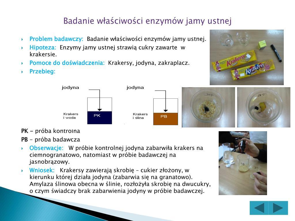 Badanie właściwości enzymów jamy ustnej
