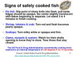 signs of safely cooked fish