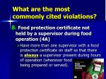 what are the most commonly cited violations44