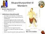 akupunkturpunktet til mandarin
