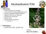 muskatellsalvie tcm