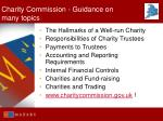 charity commission guidance on many topics