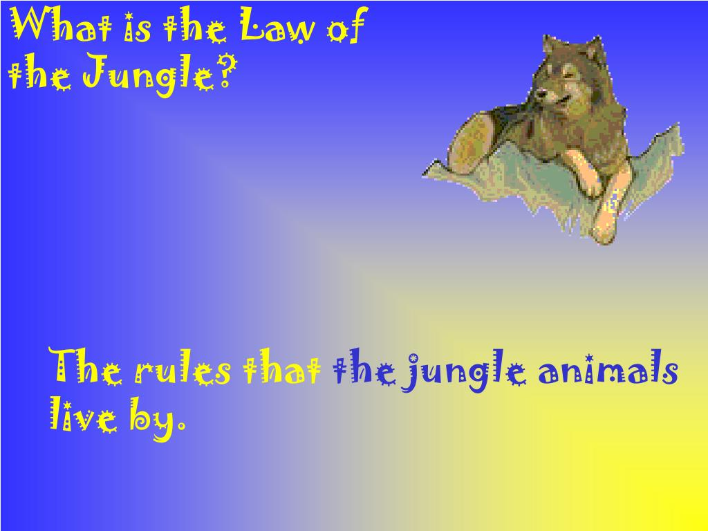 What is the Law of the Jungle?