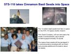 sts 118 takes cinnamon basil seeds into space