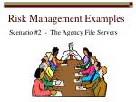 risk management examples155
