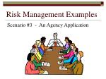 risk management examples161