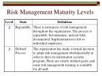 risk management maturity levels170