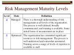risk management maturity levels171