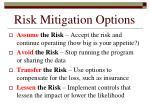 risk mitigation options138
