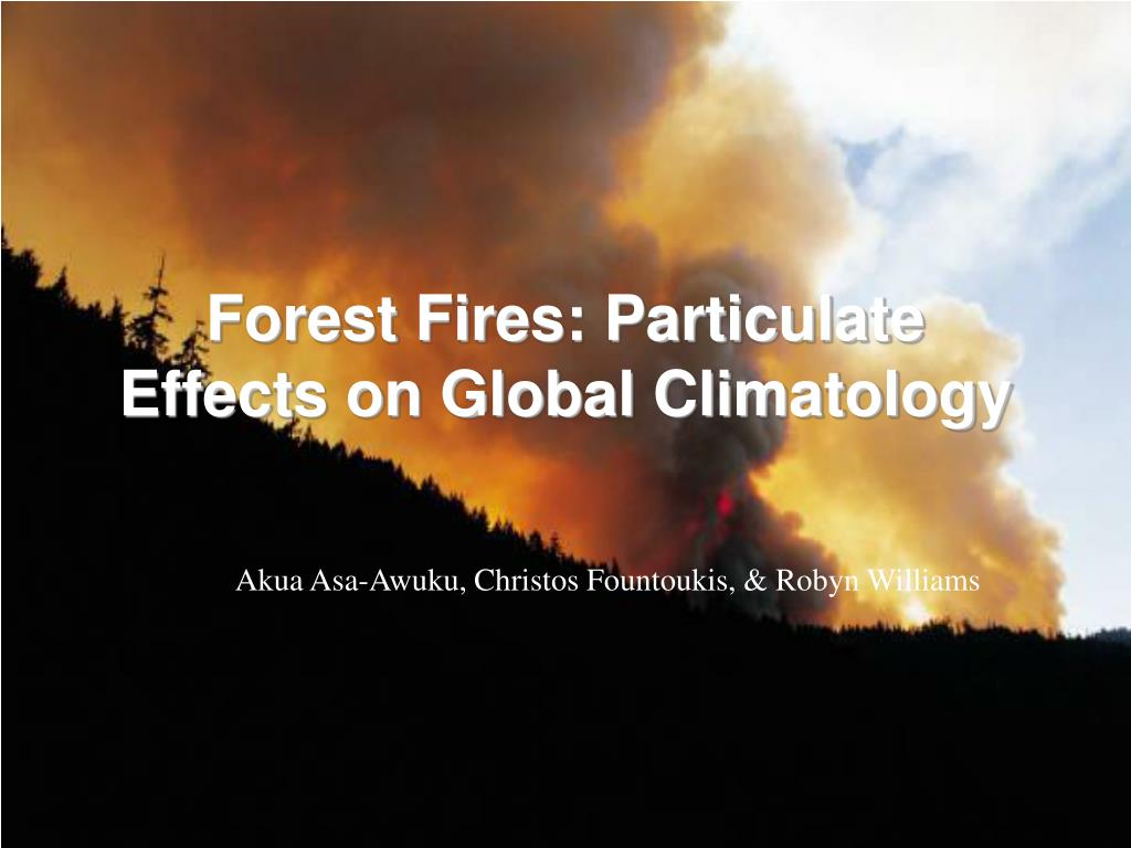 forest fires particulate effects on global climatology l.