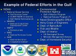 example of federal efforts in the gulf