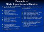 example of state agencies and mexico