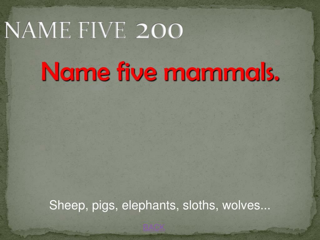 NAME FIVE