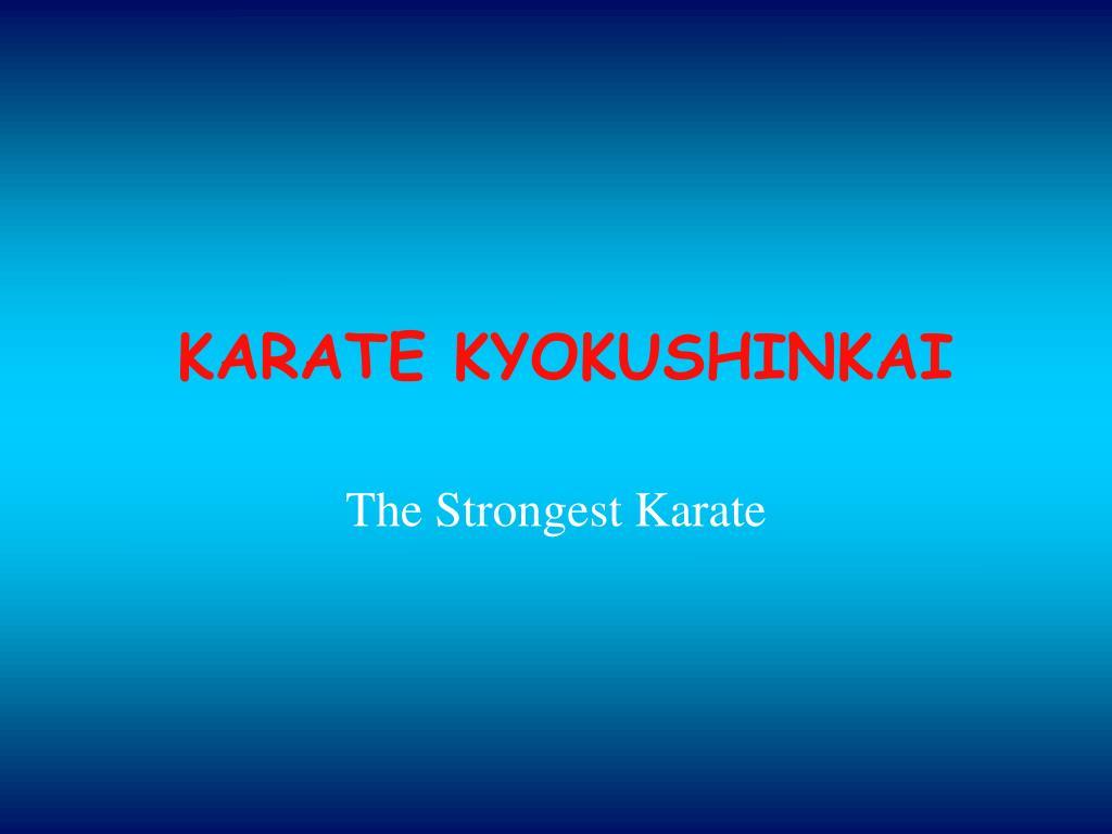 karate kyokushinkai l.