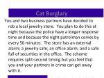 cat burglary