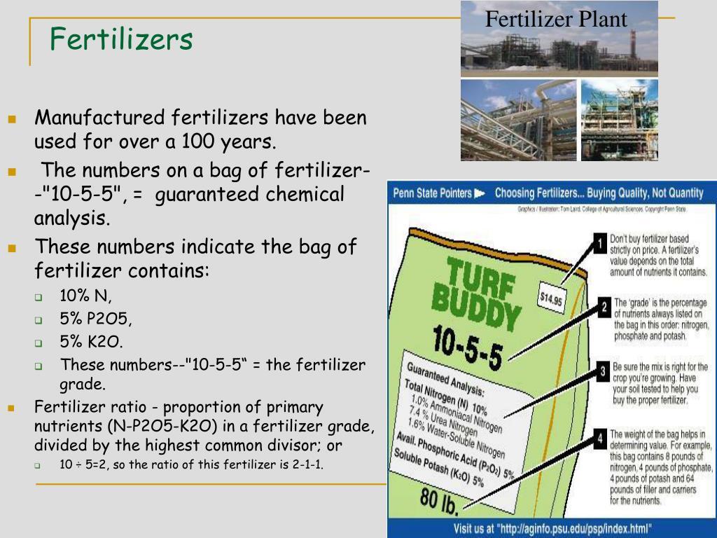 Fertilizer Plant