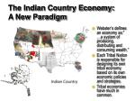 the indian country economy a new paradigm