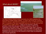 what about anwr42