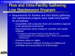 flow and intra facility gathering line maintenance program