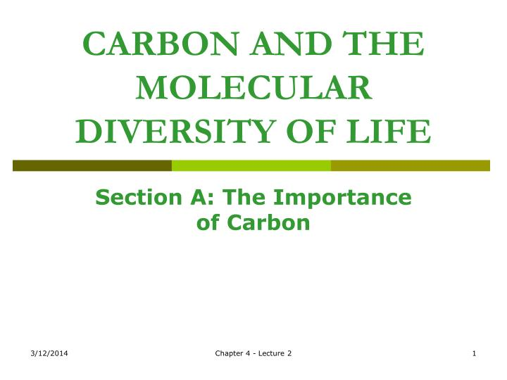 carbon and the molecular diversity of life n.