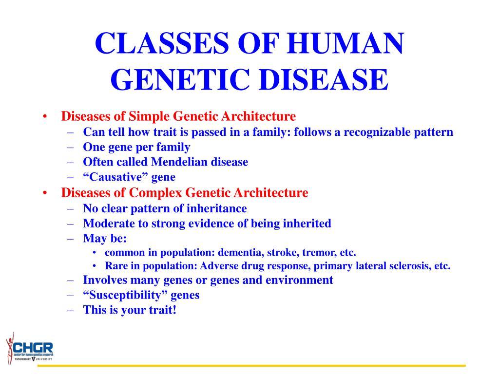 CLASSES OF HUMAN