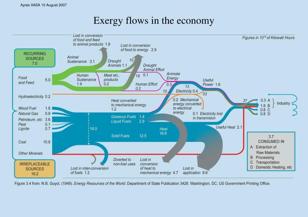 Exergy flows in the economy