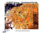 a spot scene southwest florida18
