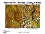 peace river hardee county florida