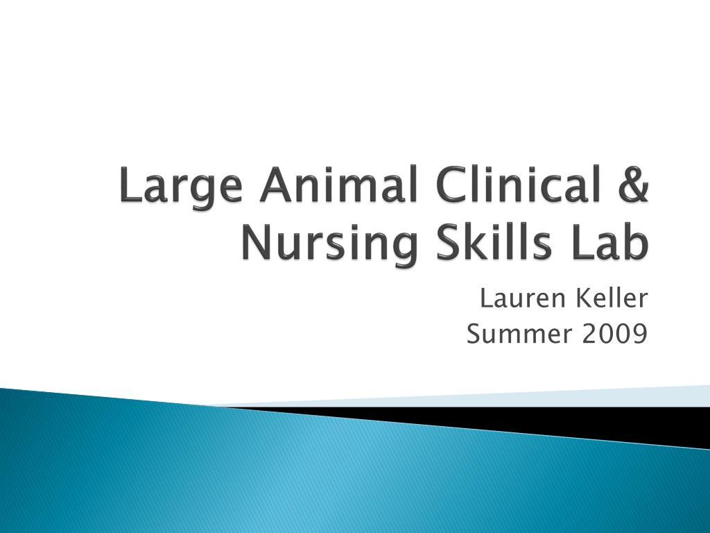 large animal clinical nursing skills lab l.