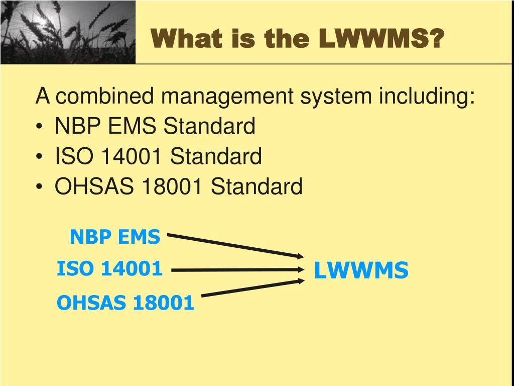 What is the LWWMS?