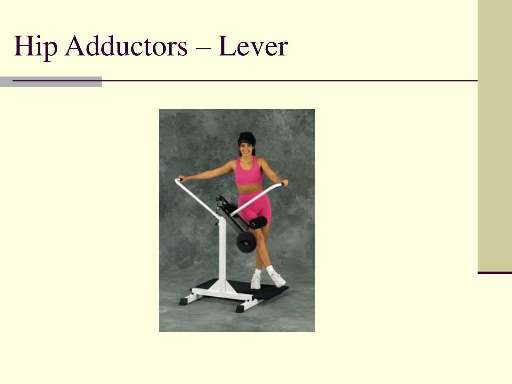 Hip Adductors – Lever