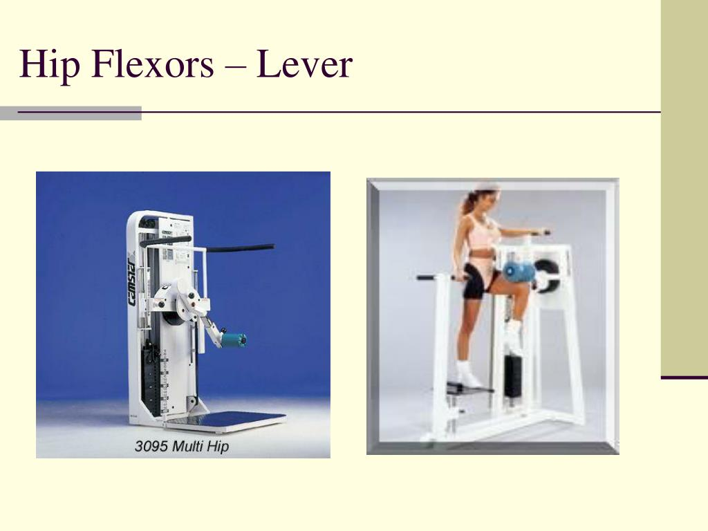 Hip Flexors – Lever