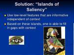 solution islands of saliency