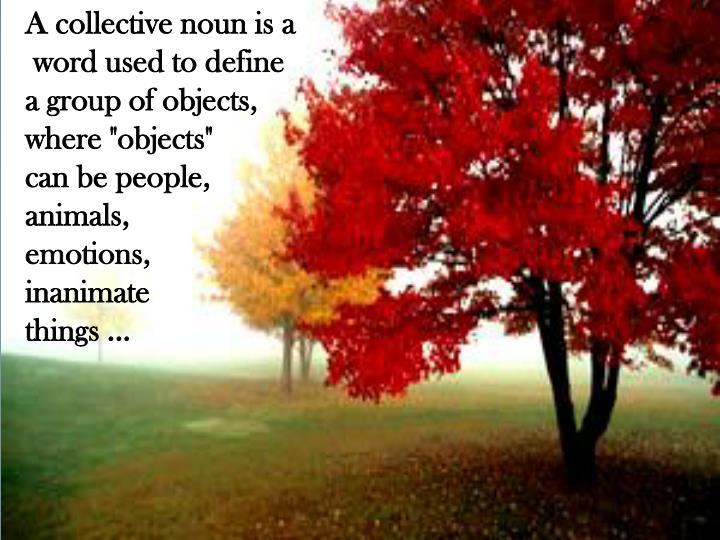 A collective noun is a