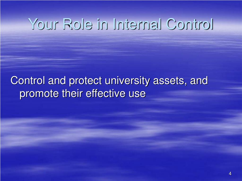 Your Role in Internal Control