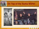 on top of the sumo world
