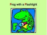 f rog with a f lashlight