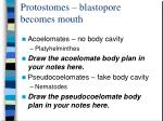 protostomes blastopore becomes mouth