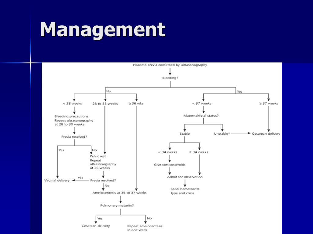 PPT - Late Pregnancy Bleeding PowerPoint Presentation - ID