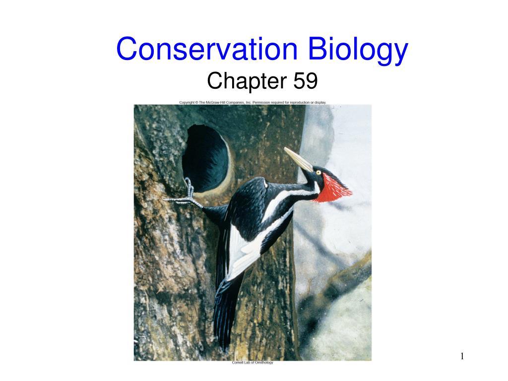 conservation biology chapter 59