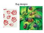 bug designs