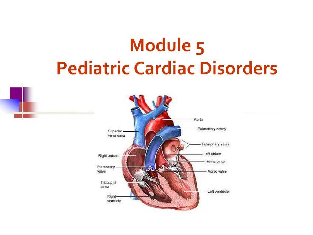 module 5 pediatric cardiac disorders l.