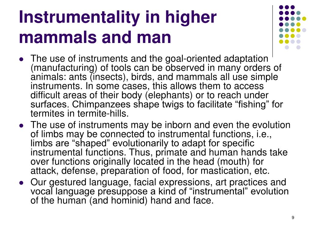 Instrumentality in higher mammals and man