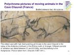 polychrome pictures of moving animals in the cave chauvet france