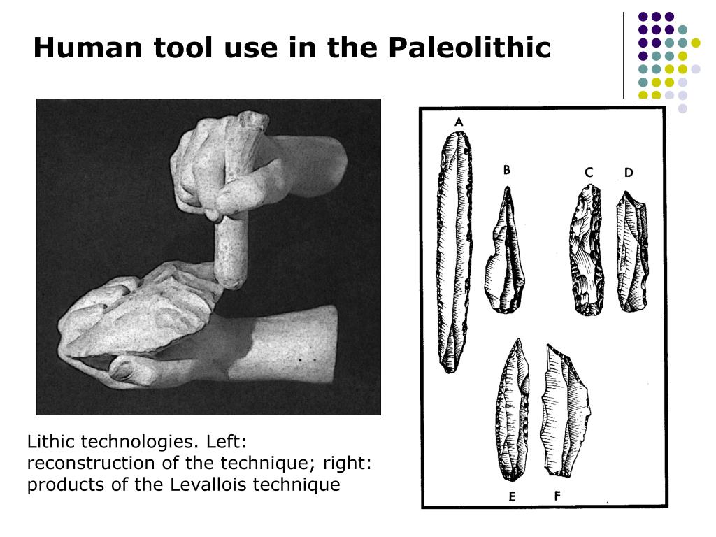 Human tool use in the Paleolithic