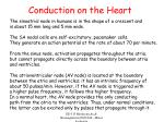 conduction on the heart