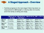 a staged approach overview33