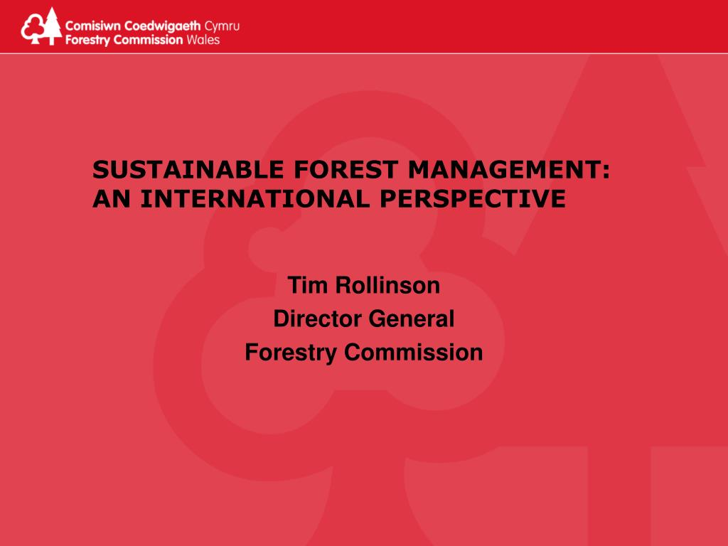 sustainable forest management an international perspective l.