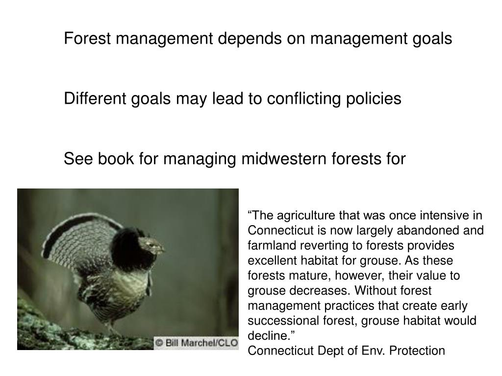 Forest management depends on management goals